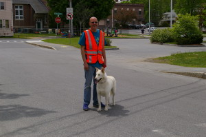 Even the nice crossing guard had his dog with him!