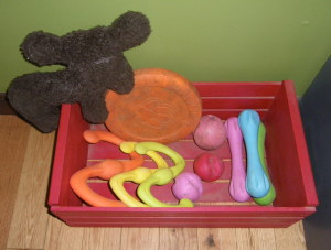 Our collection of West Paw toys...all Zogoflex except for the moose.