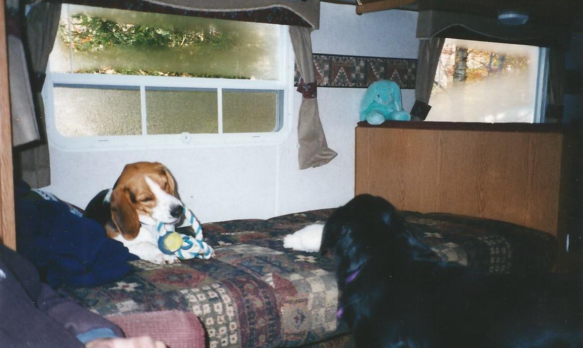 Kobi & Maggie playing at camp.