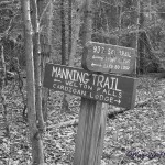 Black & White Sunday – Fall Hike
