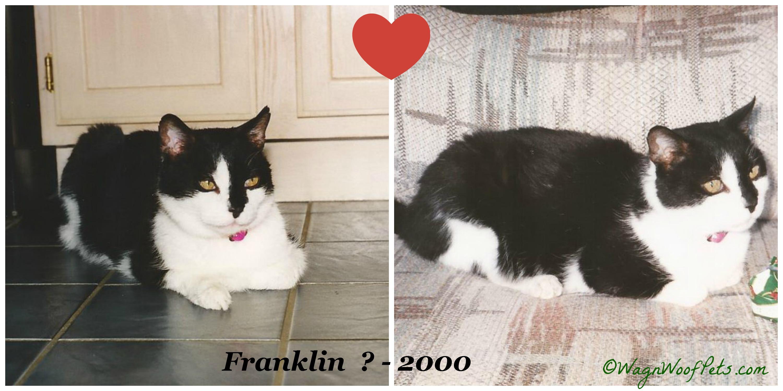 PicMonkey Collage Frank
