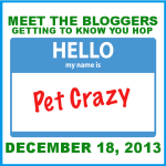 Meet the Blogger Blog Hop