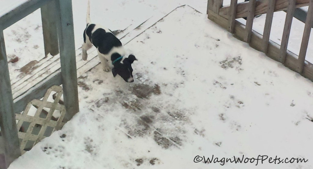 I'm coming in....it's cold out here!!!