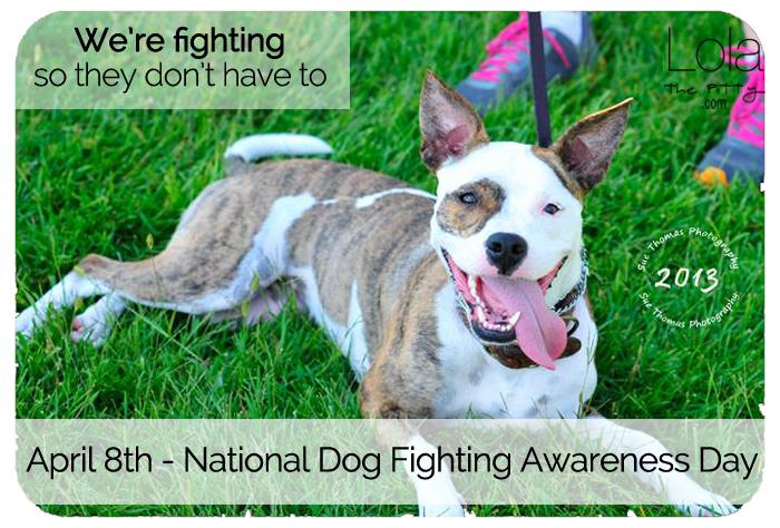 DogFightingAwarenesslolathepitty
