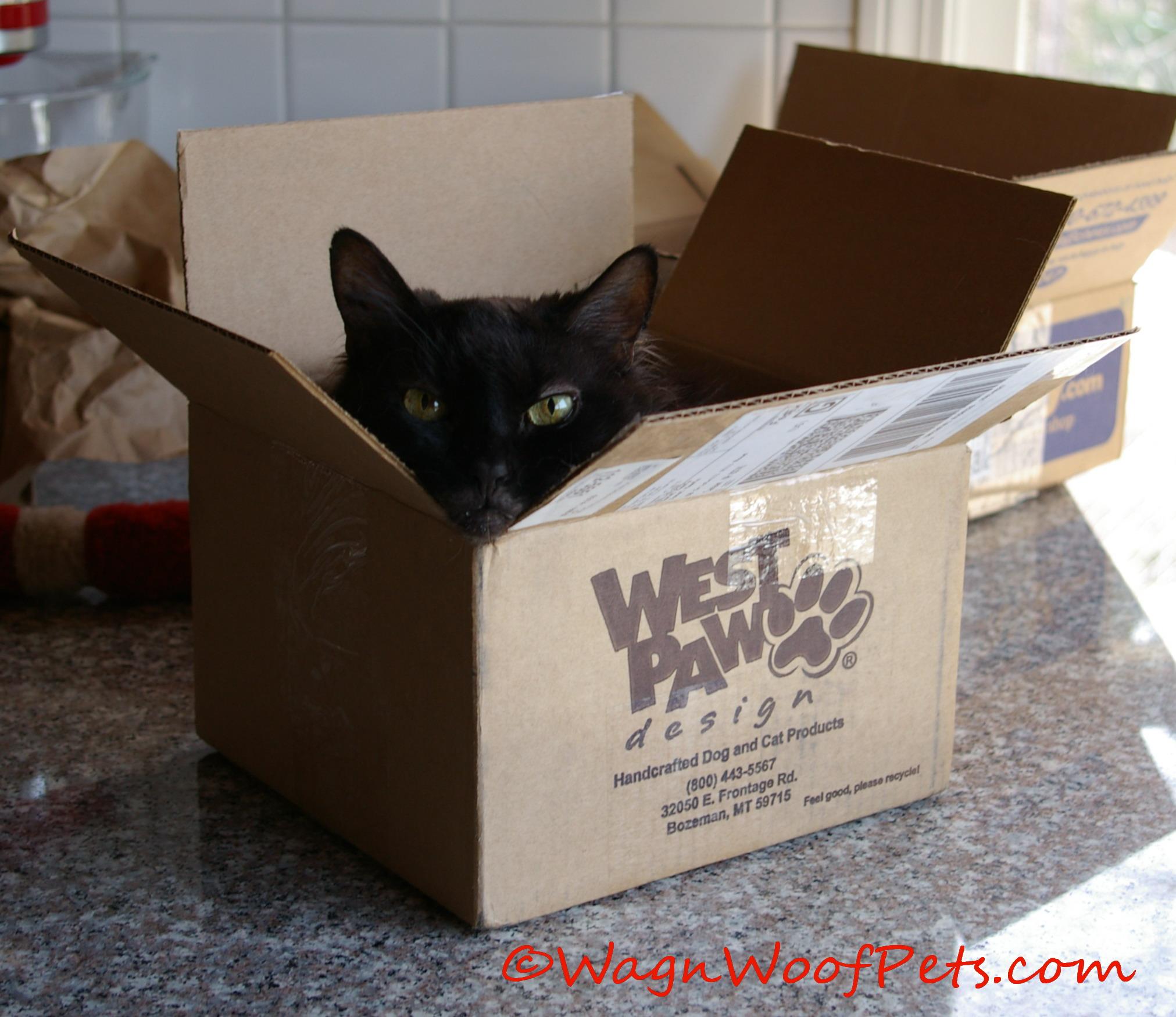 Sam box