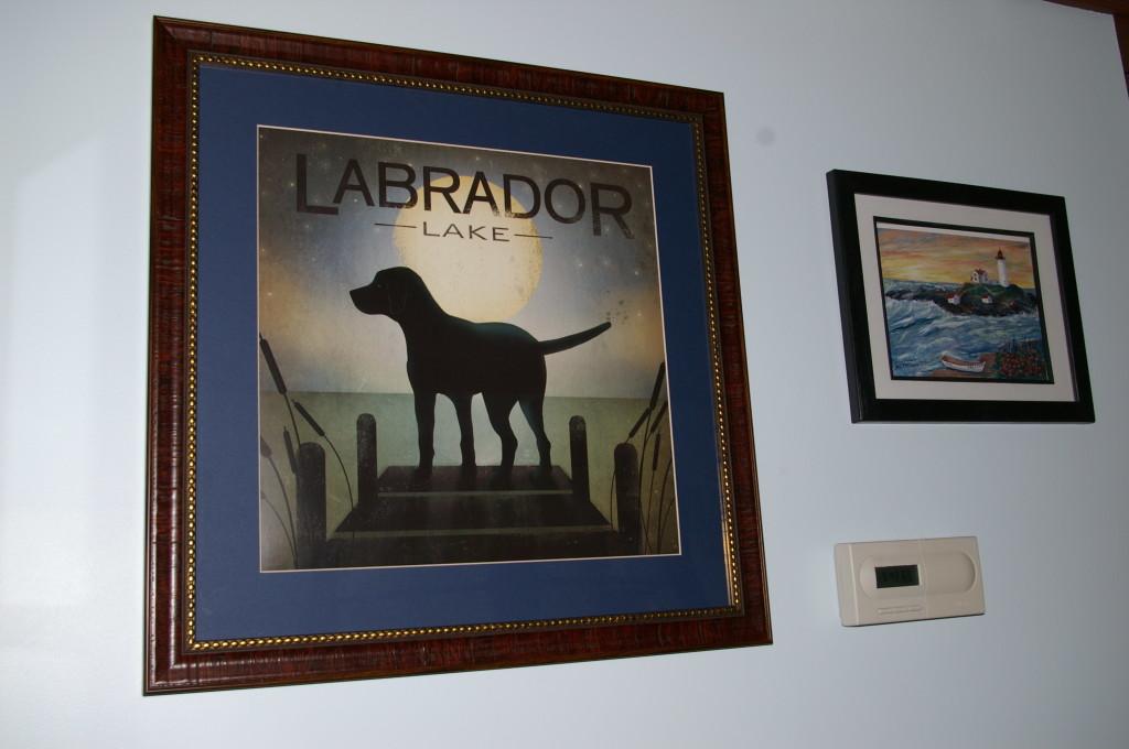 Lab Lake 3