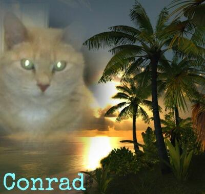 Conrad edit Jenna
