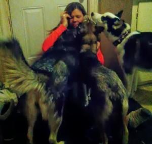 Jenna and her huskies Mika, Lexus, and Koda