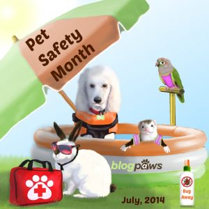 Pet Safety month