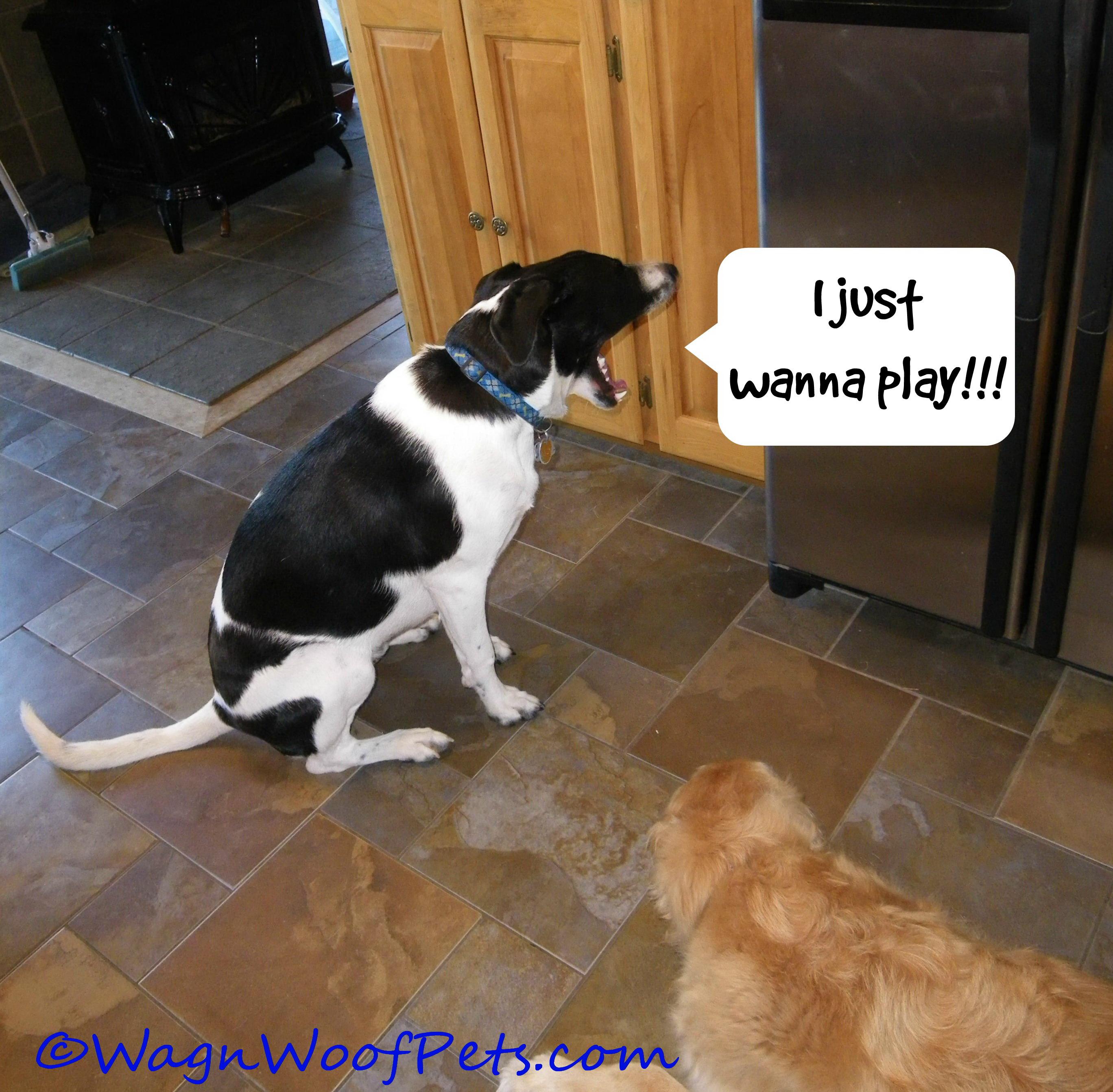 Luke play