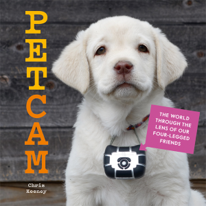Petcam cover