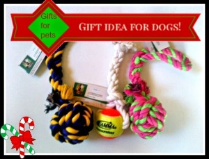 dog toys3