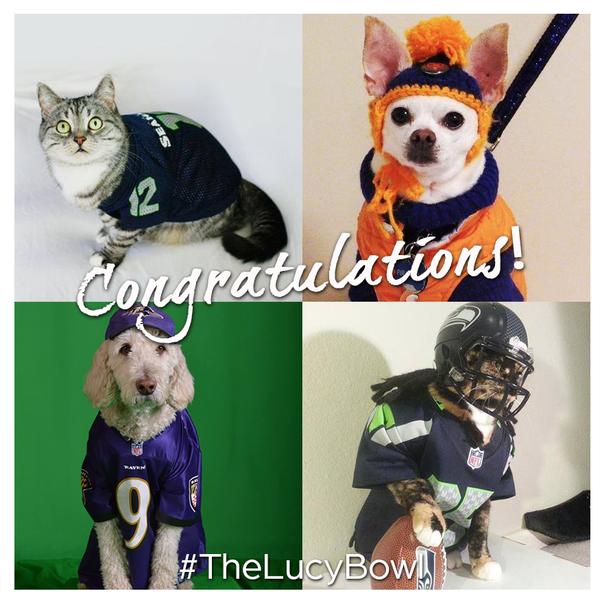 Bowl winners