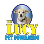 The Lucy Pet Foundation #TheLucyBowl