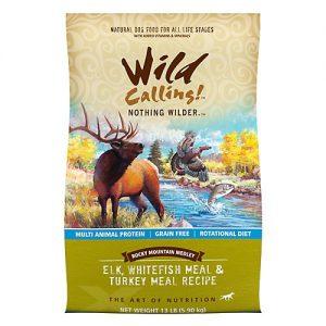 wild calling elk
