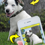 Pose A Pet™ App – Fun with Pet Photos That Benefits Rescues/Shelters #RescueRevolution