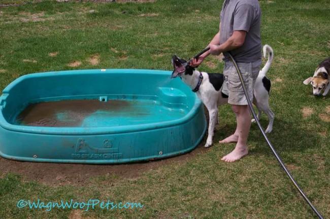 Monday Mischief - Pool Boy