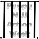 Let's Put an End to Puppy Mills #PuppyMillActionWeek