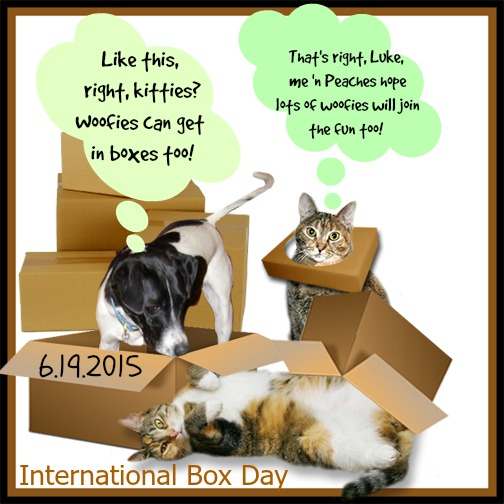 Join us on June 19th for International Box Day!