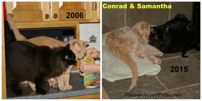 Conrad and Sam