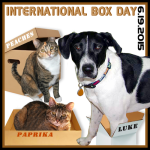 Announcing International Box Day 2015