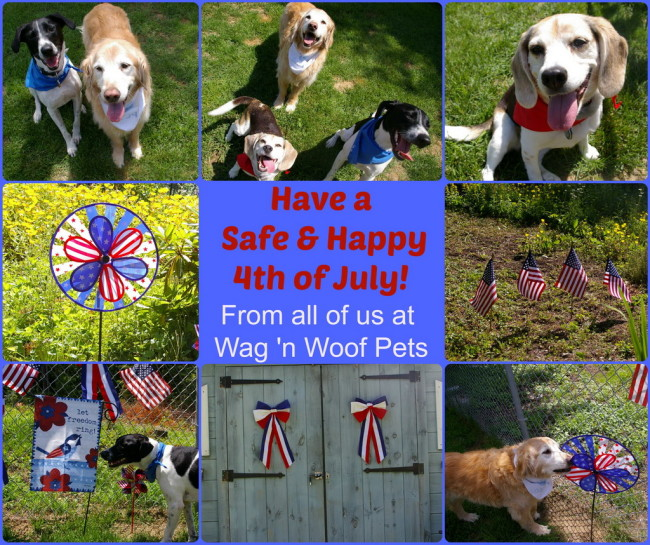 "Happy Independence Day & #52Snapshots ""Patriotic"""