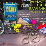 "Swimming ""Go Bag"" Essentials for Dogs"