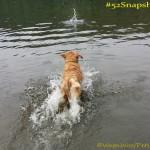 "#52Snapshots of Life ""Water"""