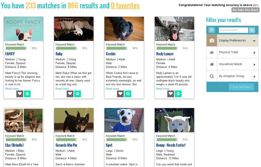 For Nat'l Dog Day - A Pet Matchmaker