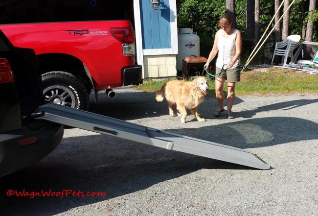 Solvit Pet Ramp Helps Dogs' Joints