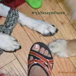 "Fun with ""Feet"" #52Snapshots of Life"