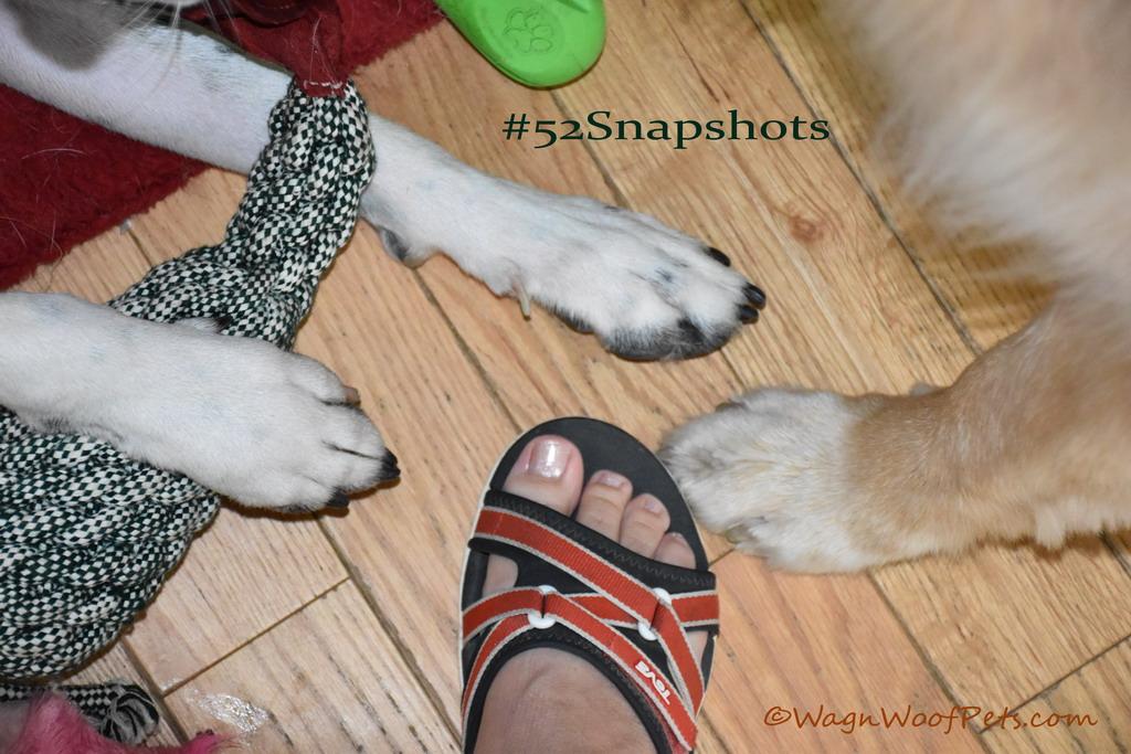 Fun with Feet #52Snapshots