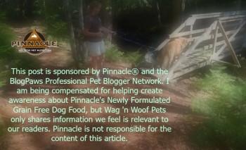 Pinnacle disclaimer