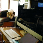 "#52Snapshots of Life – ""Technology"""