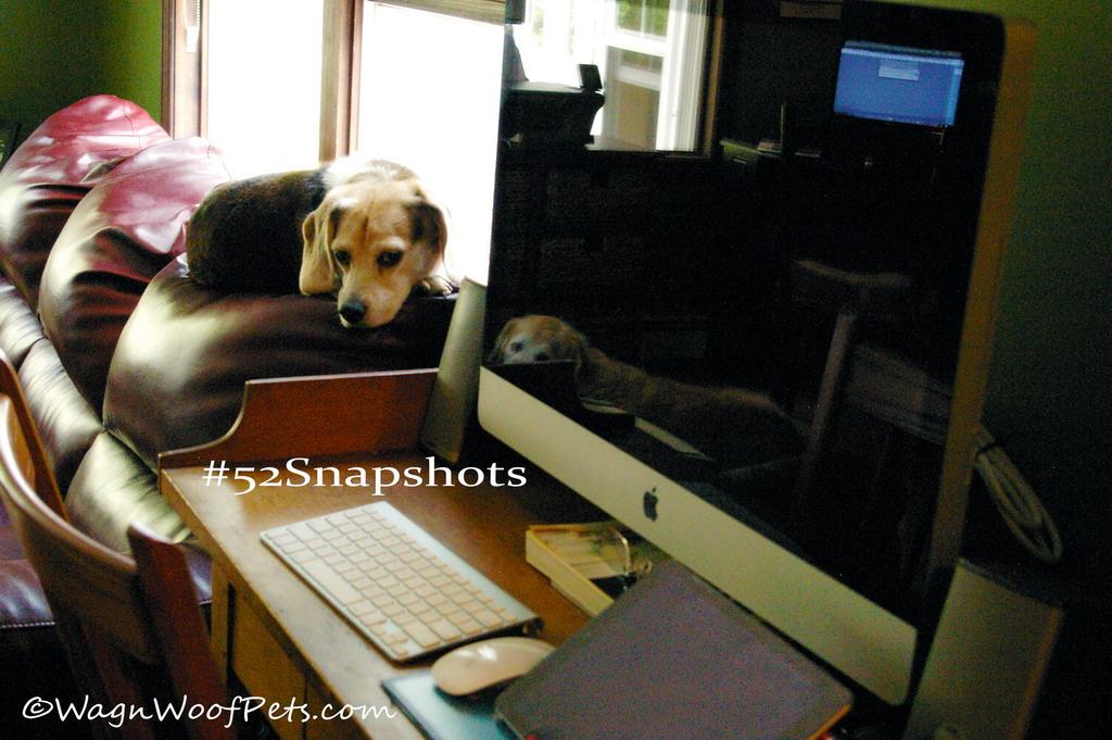 "#52Snapshots of Life - ""Technology"""
