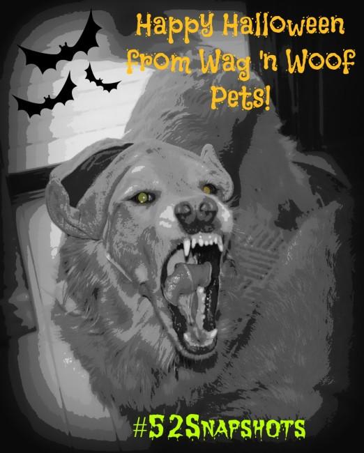 "Happy Halloween! #52Snapshots - ""Scary"""