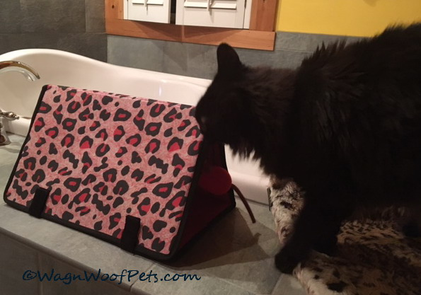 Sam Reviews Kong Triangle Play Mat?