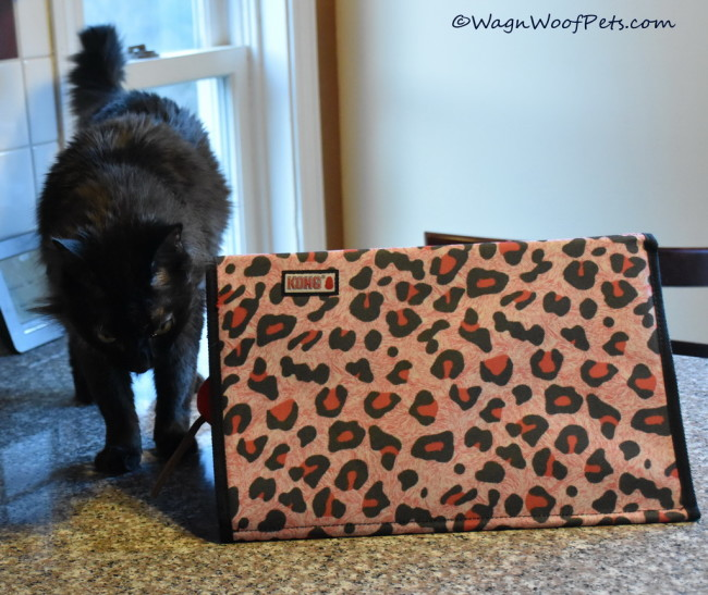 Samantha Reviews the Kong Active Triangle Playmat/Tunnel – or Does She?