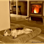 A Well Deserved Rest – Sepia Saturday
