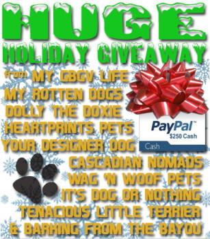 Our Gift to You - Huge Holiday Cash Giveaway