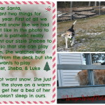 Dear Santa…..