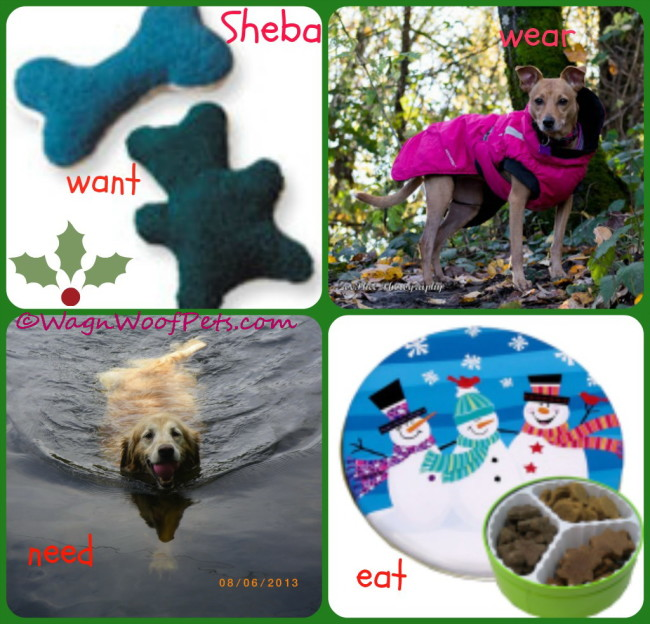 4 Gifts 4 Pets Blog Hop