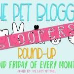 "The Pet Blogger Bloopers Round-Up – ""Whirling Dervish"""