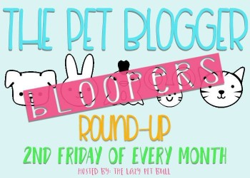 The Pet Bloggers Bloopers Roundup