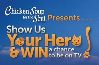 Chicken Soup 4