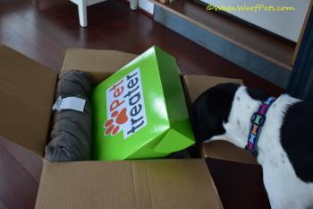Luke Scores a Pet Treater Box
