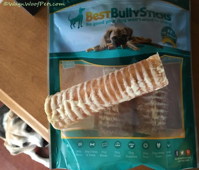 Living It Up - Best Bully Sticks
