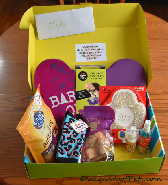 Cleaning Up with April Pet Treater Box