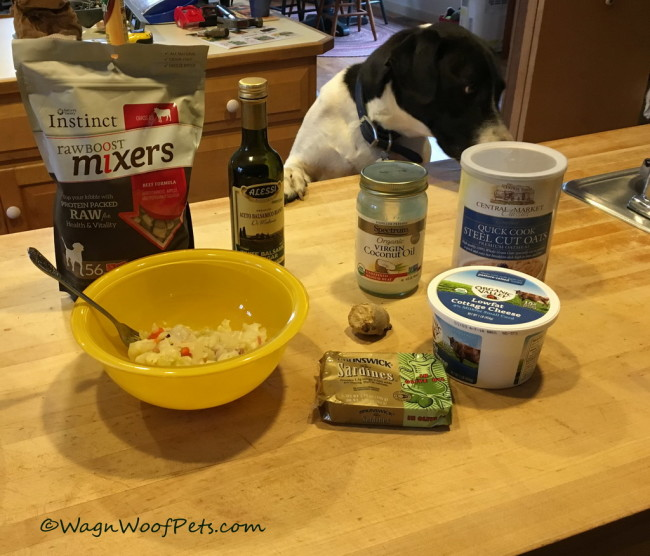Healthy Meals to Fight K9 Cancer