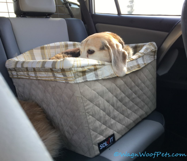 Solvit Deluxe Pet Safety Seat (& Giveaway)